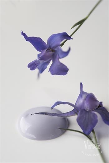 """Krijtverf Jeanne d'Arc Living """"French lavender"""""""