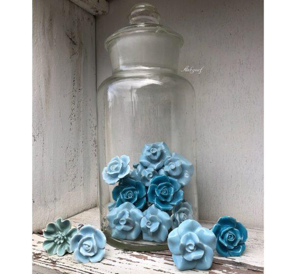 Blauwe bloem knoppen