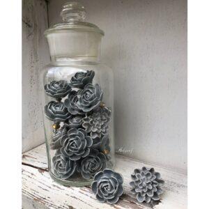 Grijze bloem knoppen