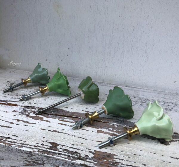 Groene bloem knoppen