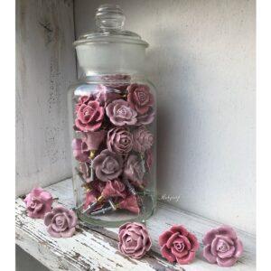 Roze bloem knoppen